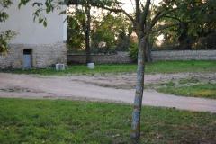 photos nikon du 23 mai 2011 au 20 septembre 2011 1313
