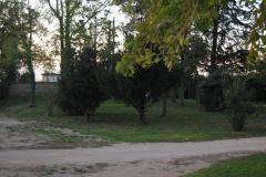 photos nikon du 23 mai 2011 au 20 septembre 2011 1314